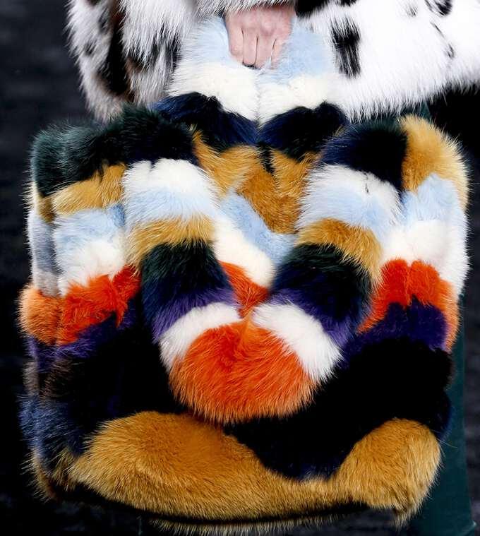 из разноцветной норки