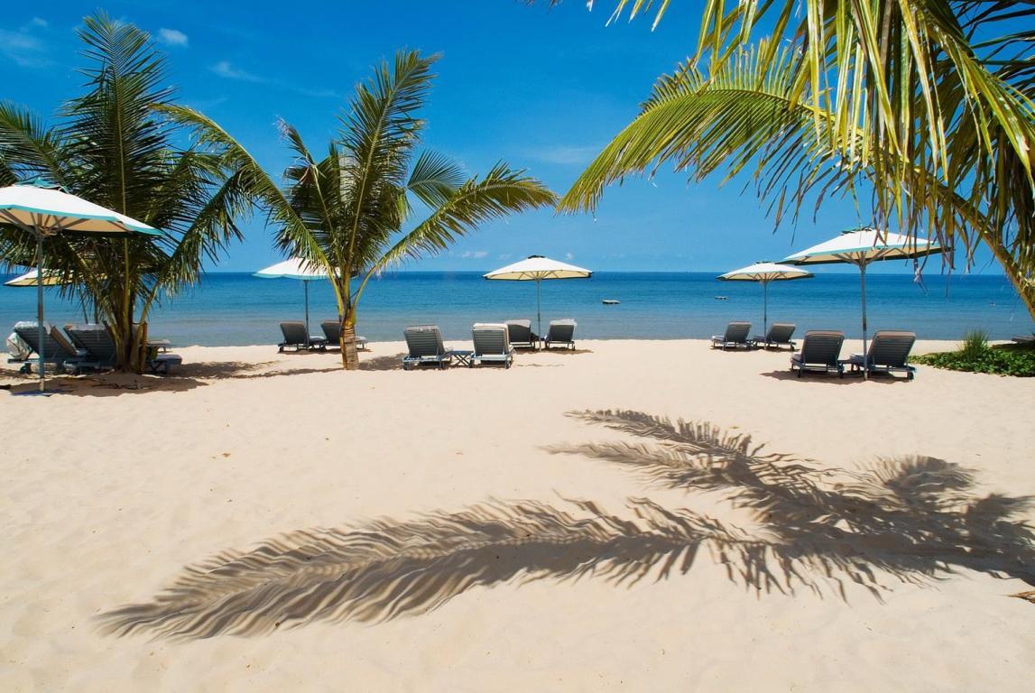 пальмы и зонтики на пляже