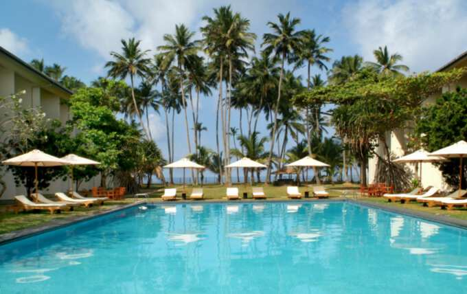 лежаки возле бассейна на Шри Ланке